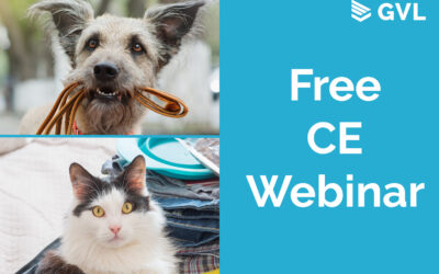 Join us on Tuesday for Free CE
